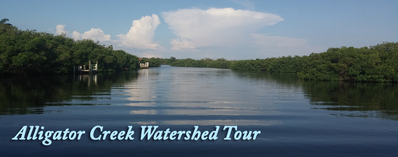 Alligator Creek Watershed Tour