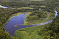 Aerial view of Upper Myakka River; Oak Palm Hammock